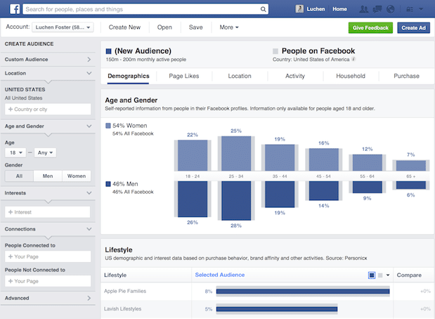 facebook audience insights przykład
