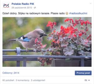 Zrzut ekranu 2016-07-11 15.44.17