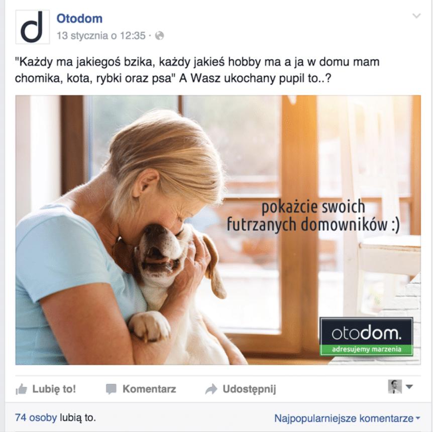 Treści od fanów – OtoDom